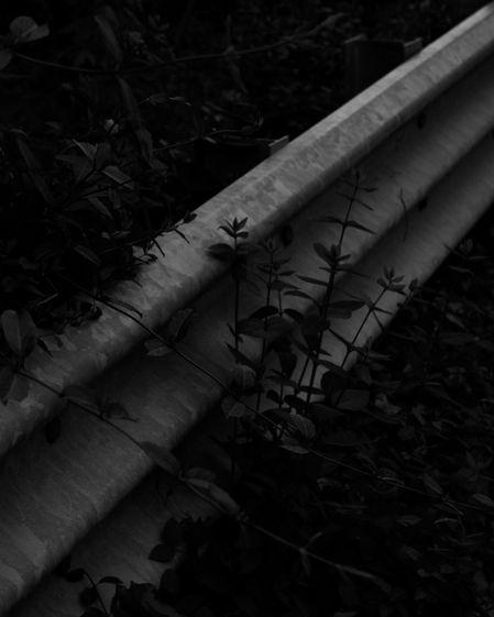 barrier.