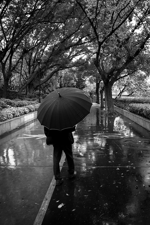 Rainy Day in the Park, Hong Kong