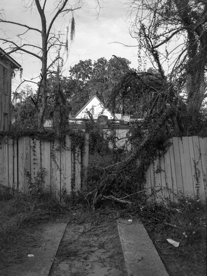 aged fence. savannah, ga.