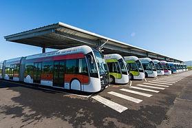 TCSP-Mozaik-bus