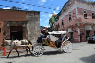 St Domingue