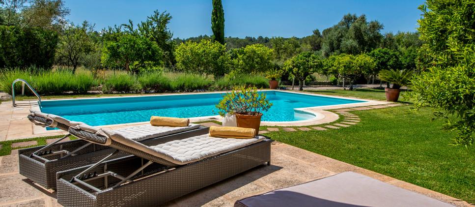 pool & chill .jpg