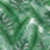 palmpattern01.jpg