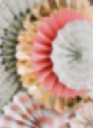 social-curator-03-2020-32.JPG