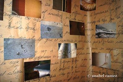 Fotografía digital + muro de frases