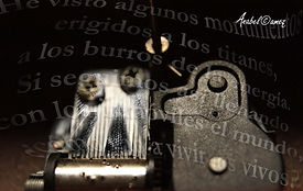 Fotografía digital y retoque fotográfico