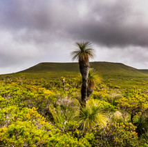 Mt Lesueur Majesty