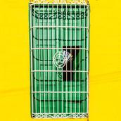 Trinidad Door