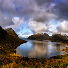 Fjord Beauty