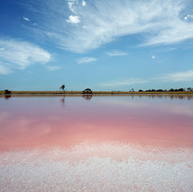Great Southern Pink Lake
