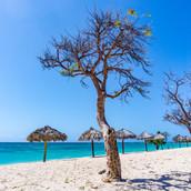Trinidad Playa