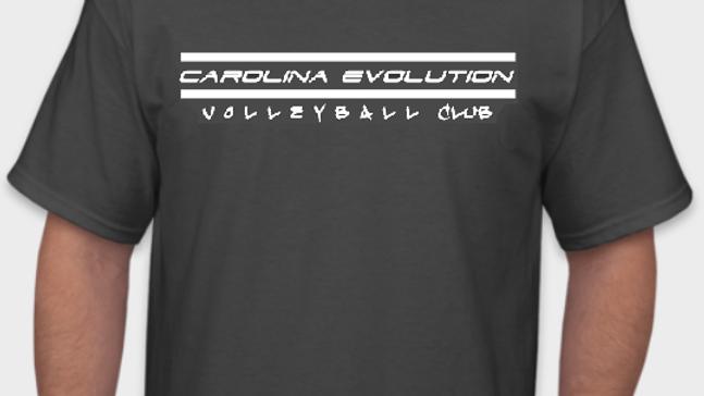 Evolution Tee-Shirt (Gray/White)