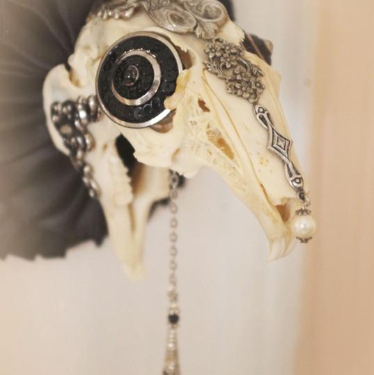 Puring the Darkness rabbit skull original art