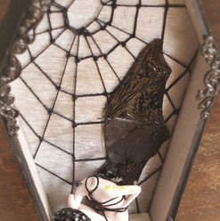 Bat Babe shibari rope coffin shadow box