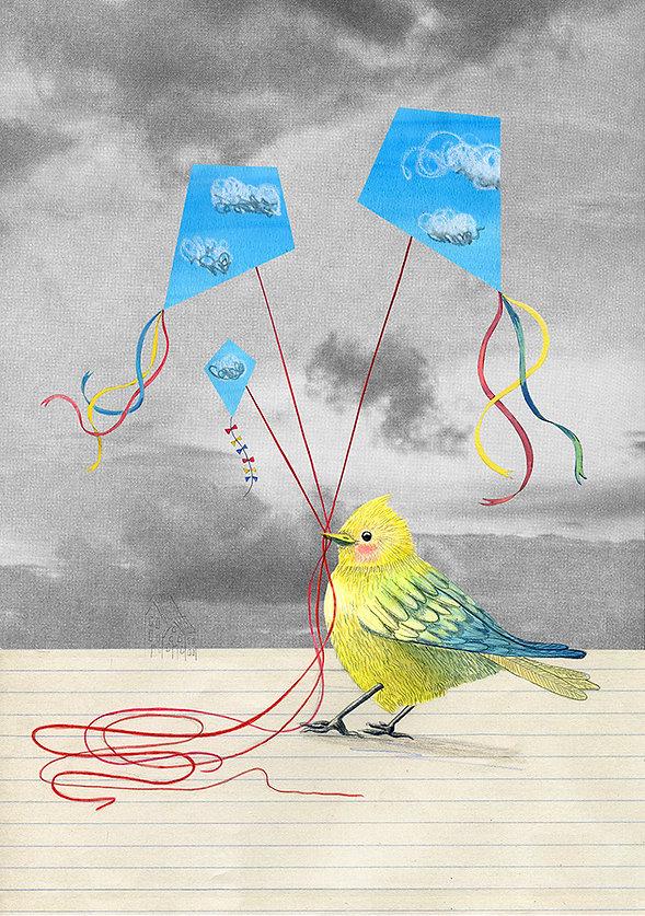kitesbird.jpg