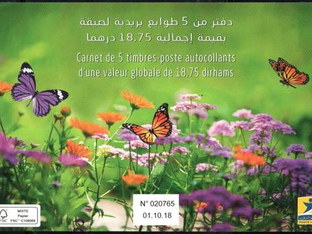 Des papillons marocains en carnet