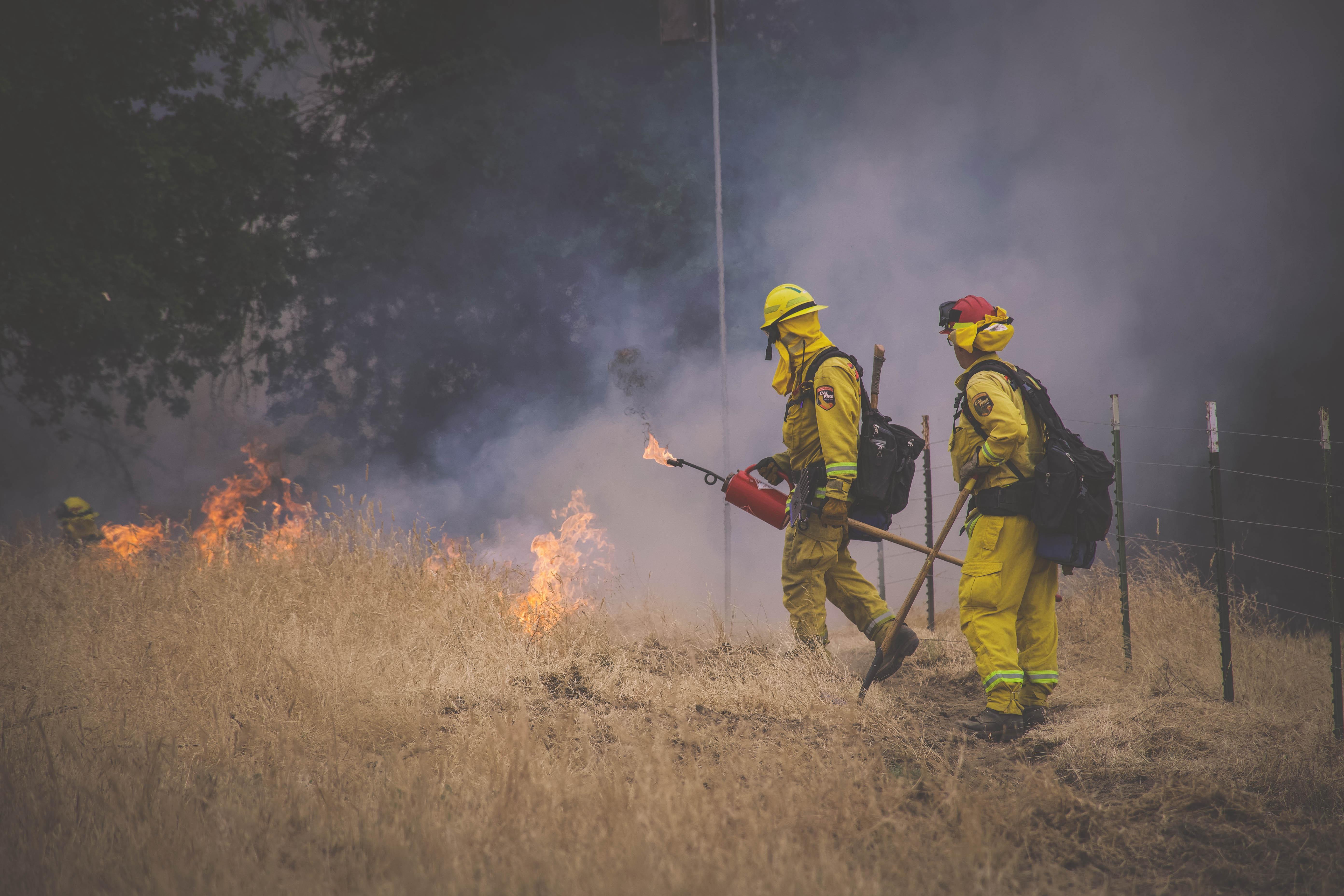 Cal Fire27