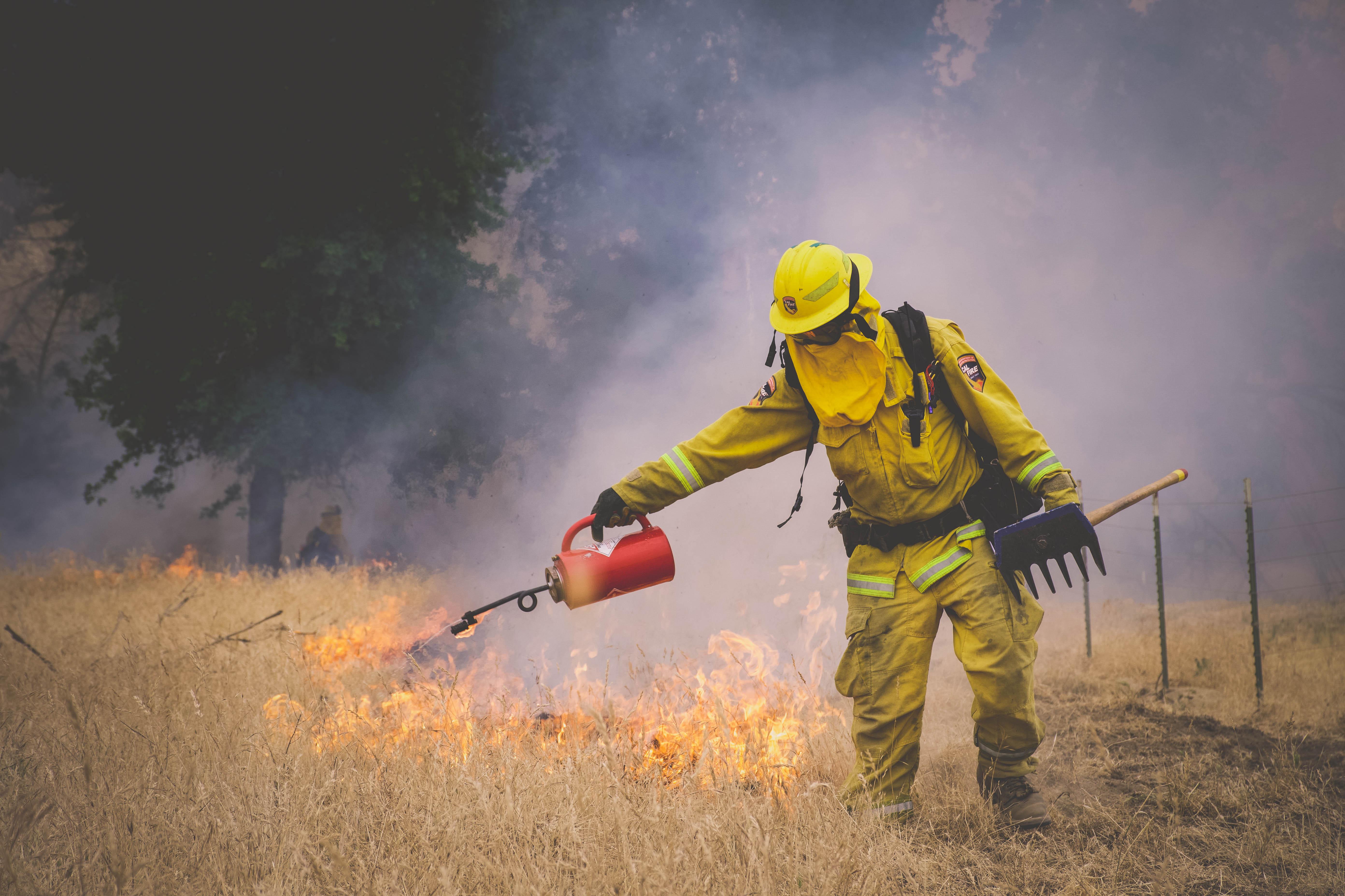 Cal Fire29