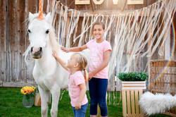 Ford Farms Unicorn21