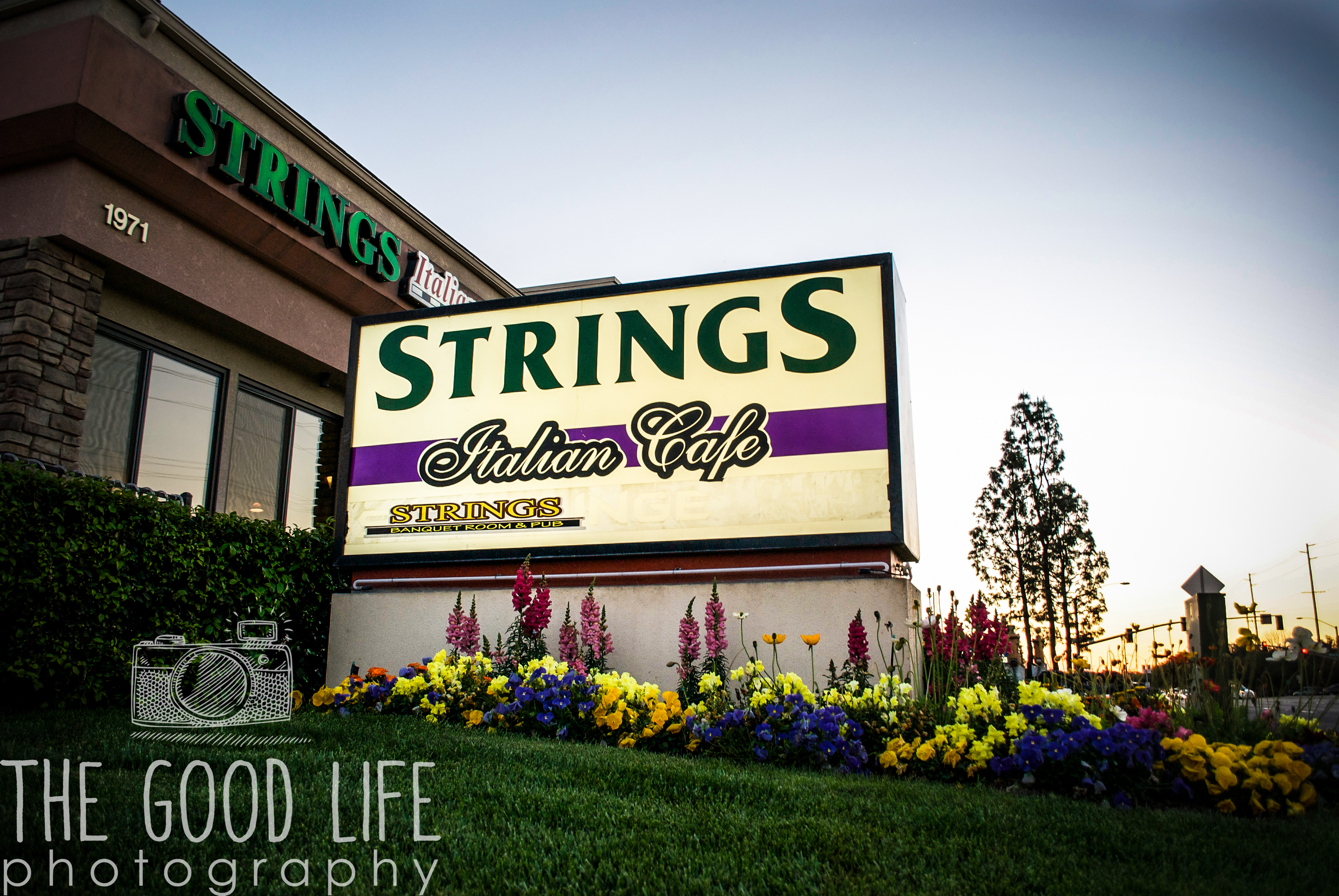 StringsRest17-1