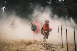 Cal Fire19