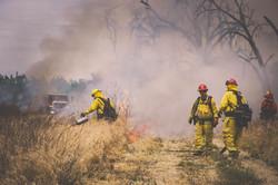 Cal Fire103