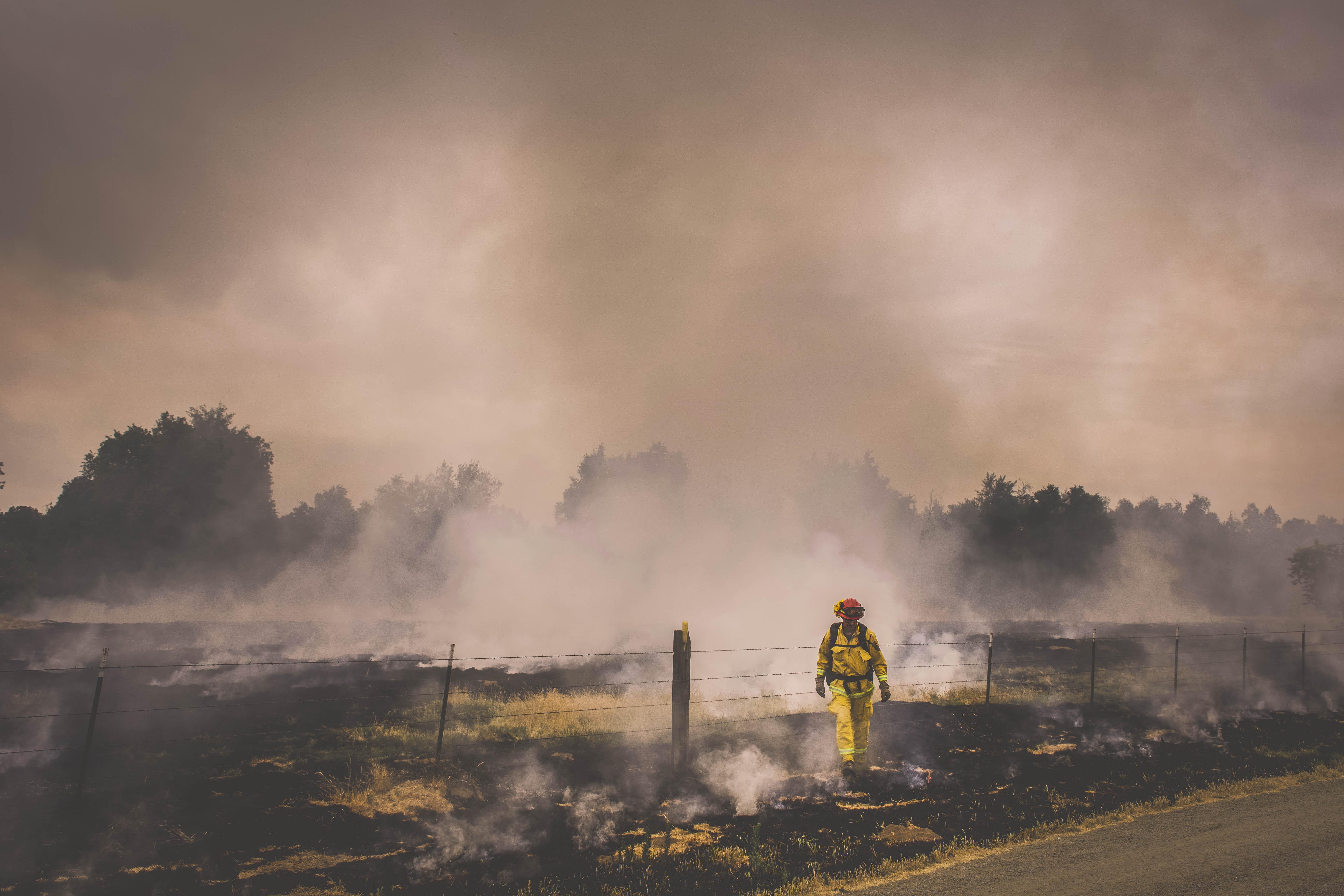 Cal Fire51