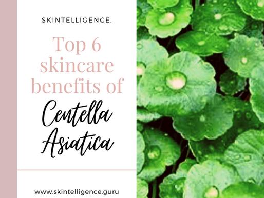 Top 6 Skincare Benefits of Centella Asiatica