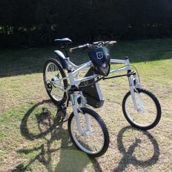 handicapped bike