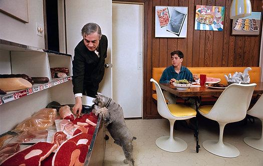 LIVING WITH POP ART Henri Dauman -  pop art family