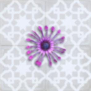 fleur pourpre fond pompon.jpg