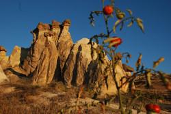 Fariy Chimneys