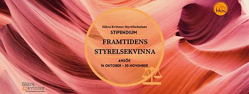 STIPENDIUM HEMSIDA.png