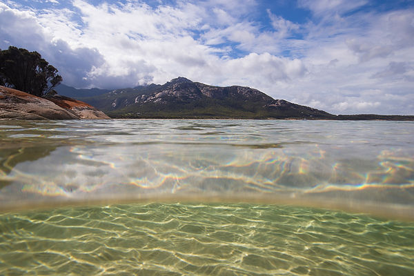 Swim, dive, fish and snorkel on Flinders Island