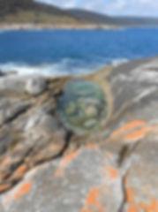 Swim, dive and snorkel on Flinders Island