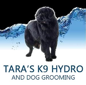 Taras K9 Hydro adn Dog Grooming