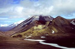 Photo © P. Morillon Horizons - NZ