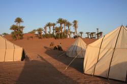 Photo © P. Morillon Horizons - Sud Maroc
