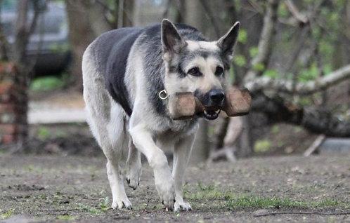 Восточно-европейская овчарка российская порода служебных собак