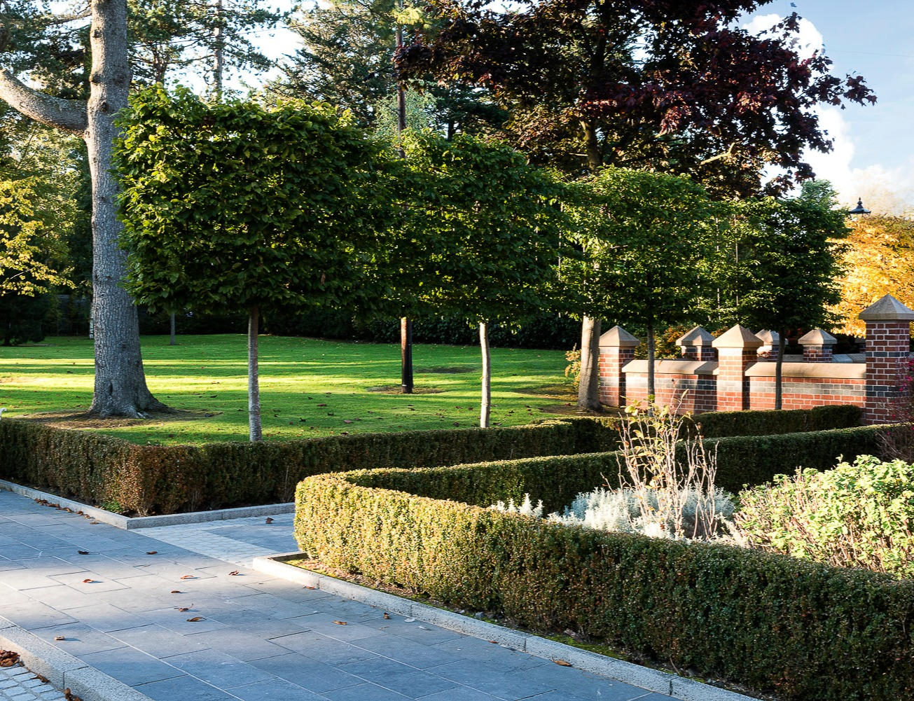 Client: Private. Project: 5 Acre Site, North Belfast.