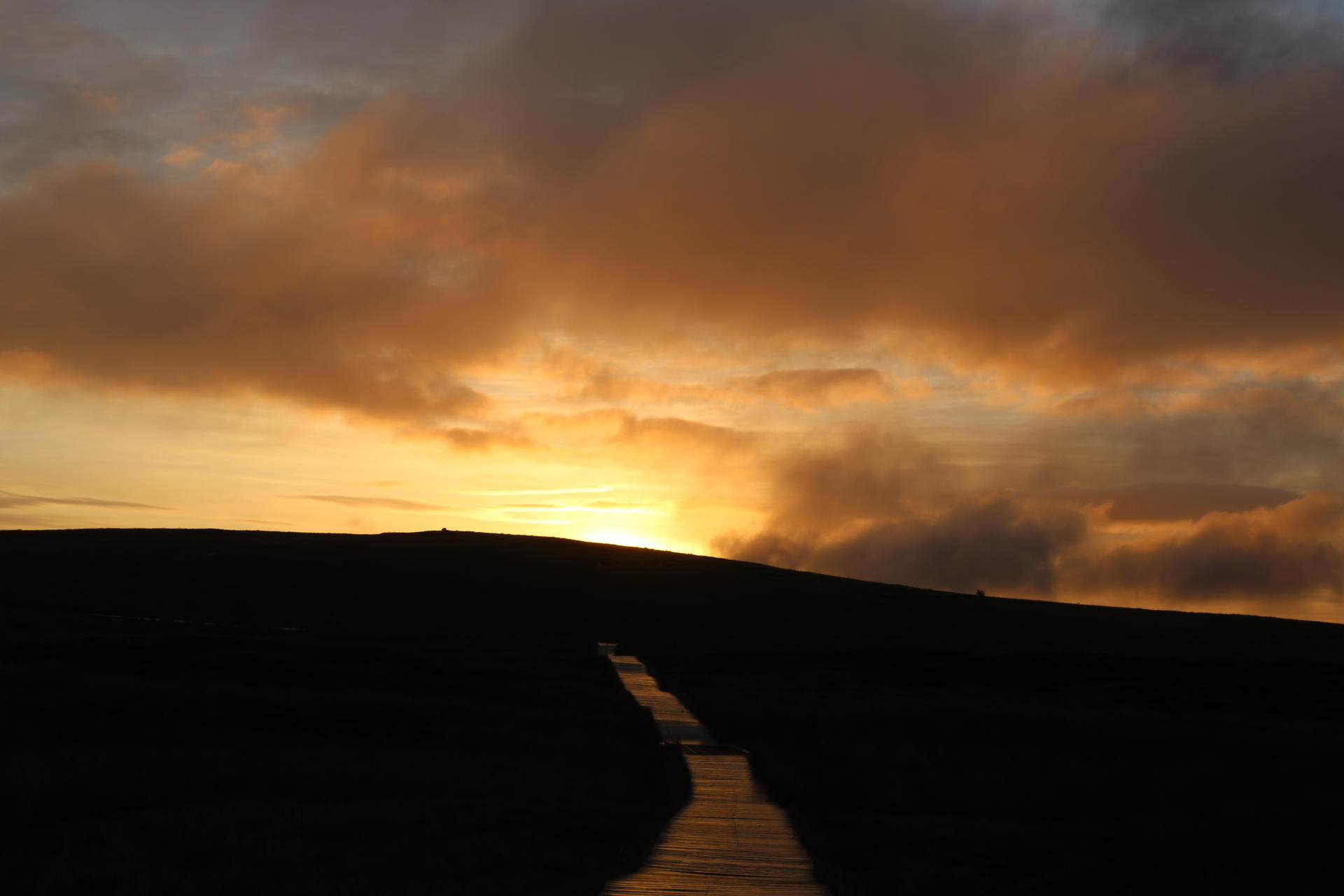 Client: National Trust. Project: Divis Mountain Visitor Experience.