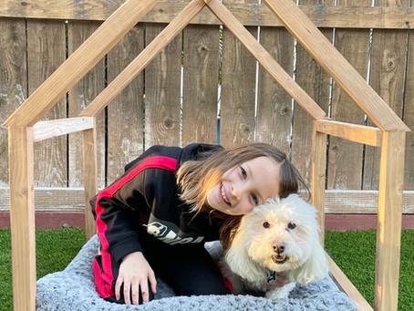 DIY Dog Bed Palace