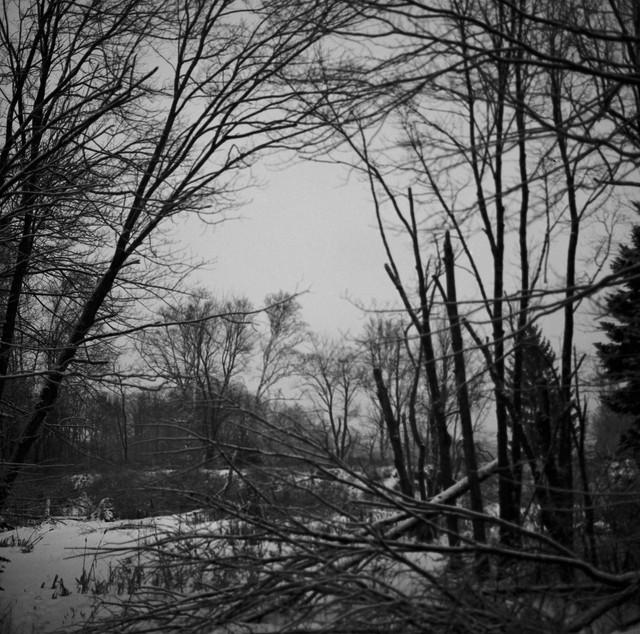 peaks frozen pond