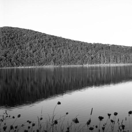 midcoast lake