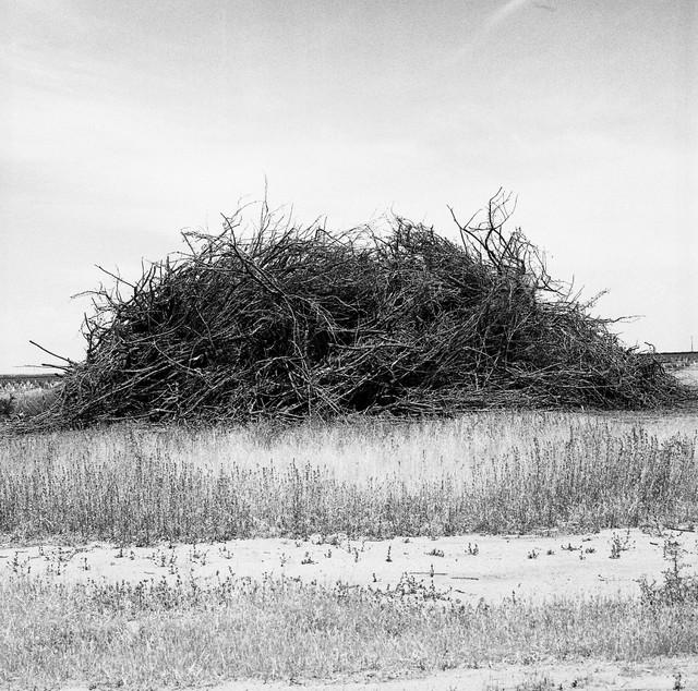 burn pile (clovis, ca)