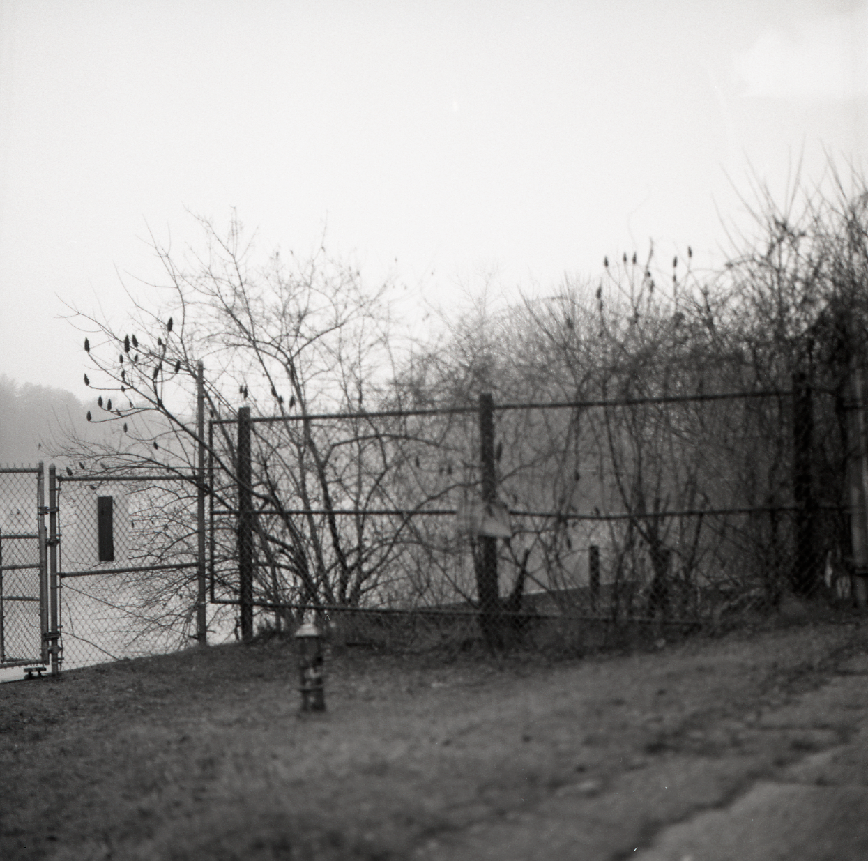lisbon gate (1 of 3)