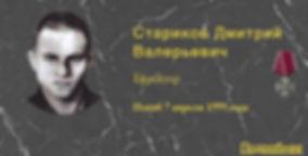 Стариков Д.В.