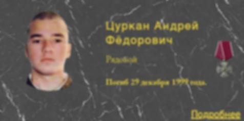 Цуркан А.Ф.