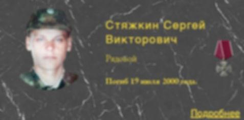 Стяжкин С.В.
