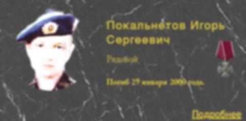 Покальнетов И.С.
